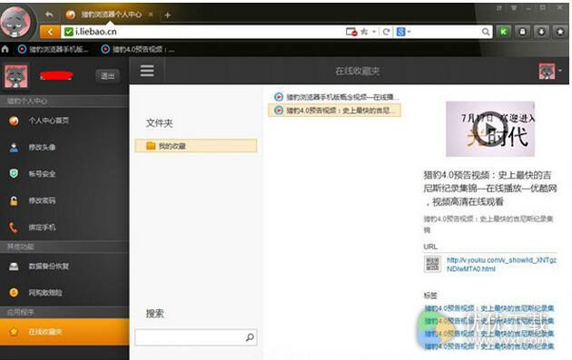 猎豹浏览器官方版 v6.0.114 - 截图1