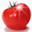 番茄花园一键重装系统官方版 v7.1.10.27
