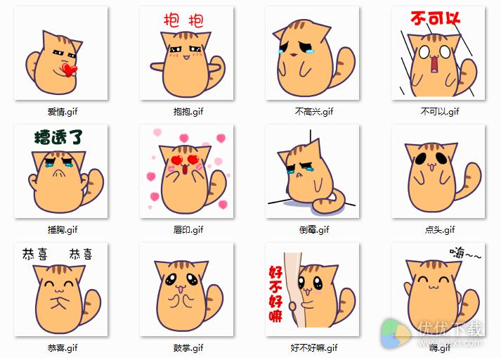 黑眼猫百变QQ表情包下载