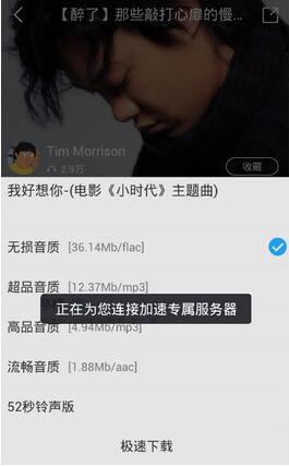 酷我音乐app去广告版 v8.3.5.1