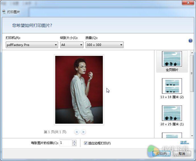 PdfFactory Pro虚拟打印机中文版 v6.10 - 截图1