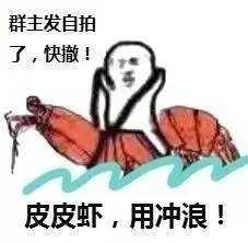 皮皮虾我们走表情包免费版 - 截图1
