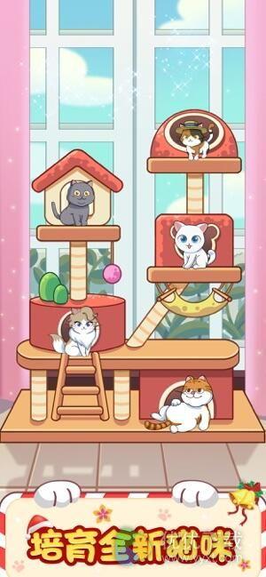 猫咪公寓ios版 - 截图1