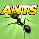 口袋蚂蚁模拟器安卓版 V0.017