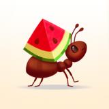 小小蚁群ios版 V1.10