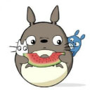 龙猫追剧安卓版 V1.2.1