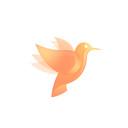 追剧鸟安卓版 V1.0.1
