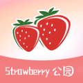 草莓公园安卓版 V1.0.0