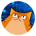 当机器人爱上猫安卓版 V2.1.1