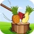 劈砍水果大师安卓版 V1.3