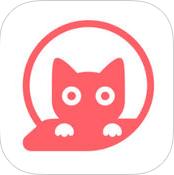喵多多安卓版 V1.0
