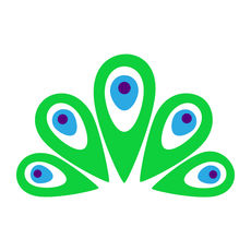 金雀浏览器ios版 V1.0