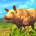 一只特立独行的猪安卓版 V1.2