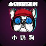 小奶狗视频安卓版 V3.12.00