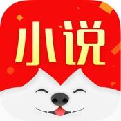 旺旺小说阅读神器ios版 V1.0
