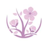 樱花视频安卓无限观看版 V1.0