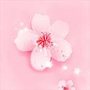桃花社区安卓无限看版 V1.0
