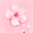 桃花社区安卓破解版 V1.0