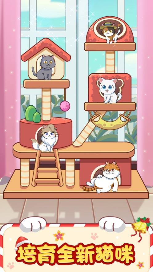 猫咪小家手游app截图