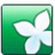 Windows清理助手V3.2.3.14(系统优化工具)绿色免费