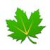 绿色守护(优化助手)V2.6 beta1 for Android安卓版