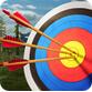 射箭大师3D(模拟射箭) v1.4 Android安卓版