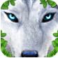 终极野狼(狼的一生) v1.0.1 for Android安卓版