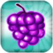 水果突击for iPhone苹果版5.1(益智消除)