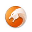 猎豹安全浏览器 V5.3.108.10480官方版(浏览器下载)