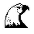 DNSSpeeder V2.8.5 中文绿色版(本地DNS解析缓存软件)