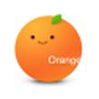 桔子浏览器 1.1.9.1044官方版(迷你浏览器)