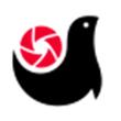 画报for iPhone7.0(生活娱乐)