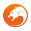 金山猎豹浏览器绿色版 V5.3.108.13212r1