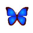 BkViewer V4.9i绿色版(照片浏览器)