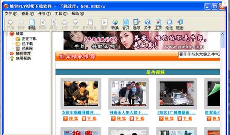 维棠FLV视频下载软件 V2.0.2.1官方免费版(视频下载) - 截图1