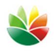 EximiousSoft Logo Designer V3.81官方版(Logo设计软件)