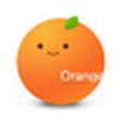 桔子浏览器 1.1.9.1053官方版(极轻浏览器)