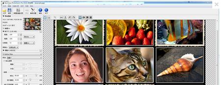 PhotoZoom Pro V6.0.4.0简体中文官方版(图片无损放大工具) - 截图1