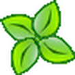 Xlight FTP V3.8.5.1中文版(FTP服务器)