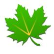 Greenify V2.8 beta 5官方版for android (系统管理)