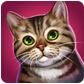 猫舍(猫咪旅馆) v1.0.14 for Android安卓版