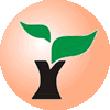 雨林木风U盘启动盘制作工具V6.3(装机版+UEFI版)