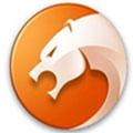 金山猎豹浏览器官方版 V5.3.108.13212r1