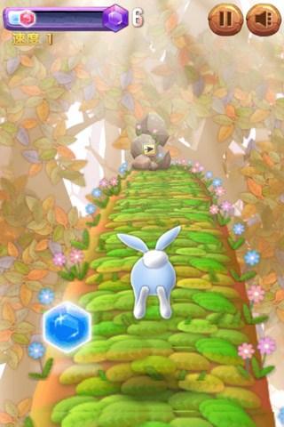 酷跑兔子for iPhone苹果版5.1(休闲跑酷) - 截图1
