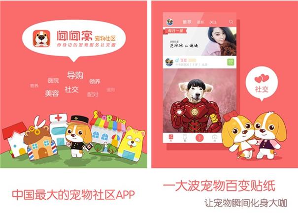 闻闻窝宠物社区for iPhone6.0(宠物生活) - 截图1