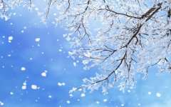 自然雪景桌面壁纸