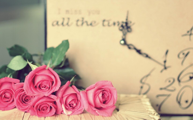 唯美花卉清新桌面壁纸电脑花卉壁纸大全_高清花卉桌面壁纸下载