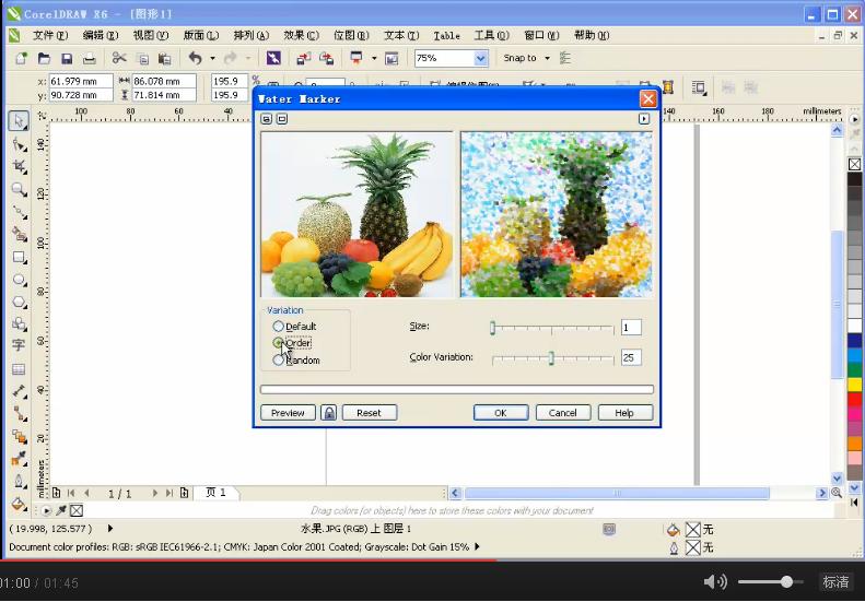 CorelDRAW视频 课堂举例-水印画