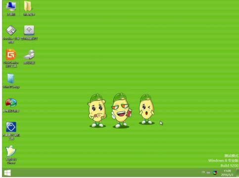 大番薯pe查询ghost密码教程