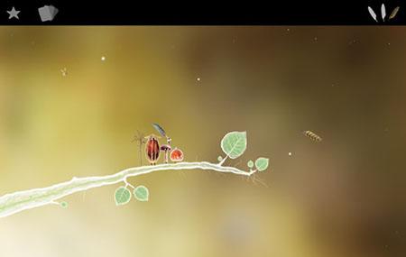 植物精灵第一关收集三根羽毛攻略